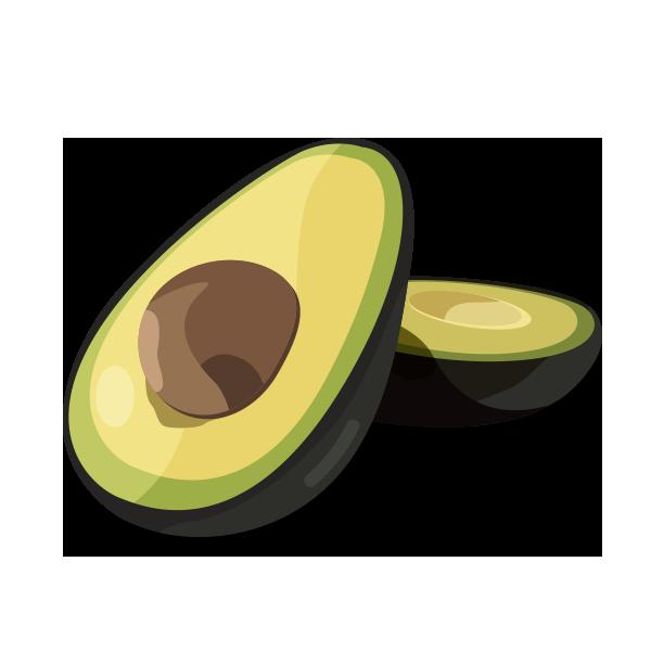 Avocado Vector Graphic