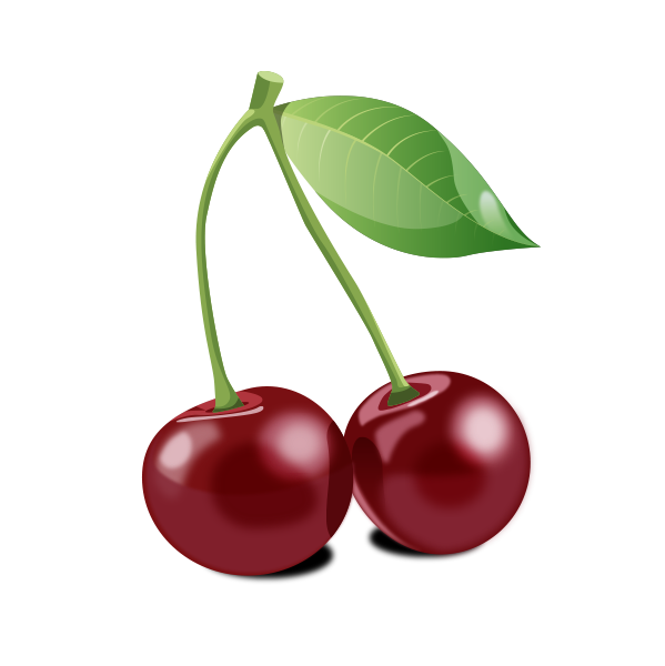 Cherry Vector Graphic